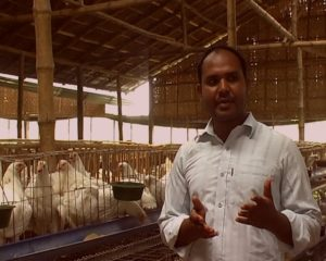 Manik Uddin, Rajshahi Poultry Farm